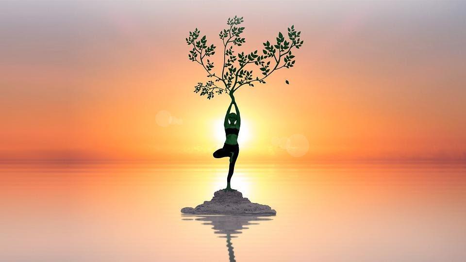 Yoga teaching course