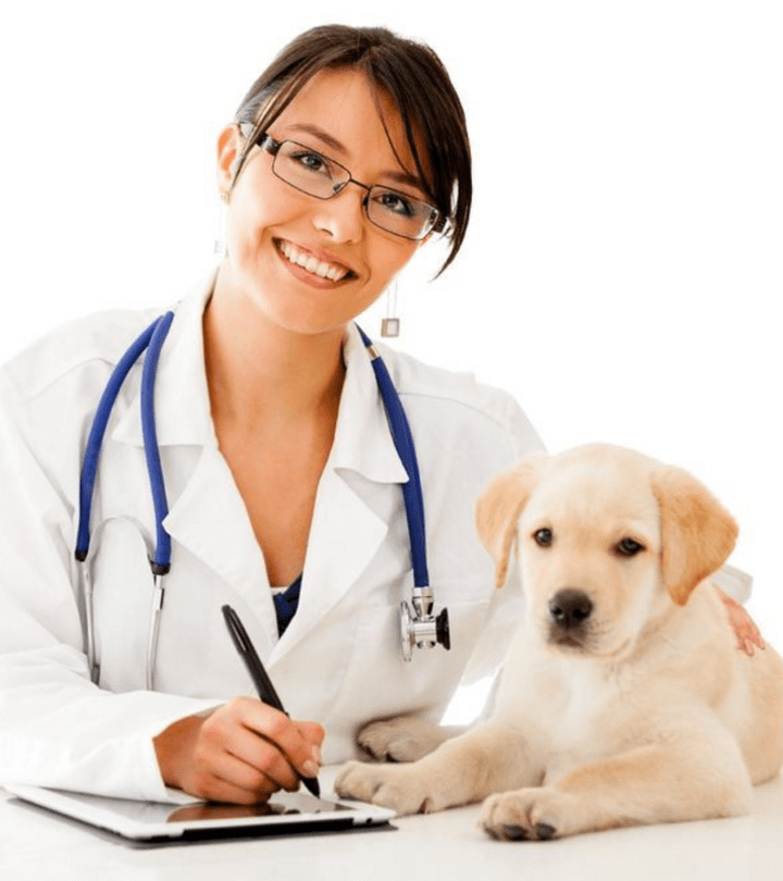 How does veterinary basic science course help you with NAVLE preparation?