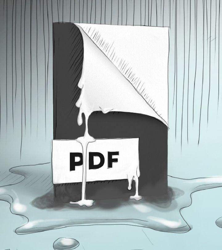 3 Advantages and Disadvantages of PDF File Format